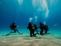 PADI, divers, diving, course, Lanzarote