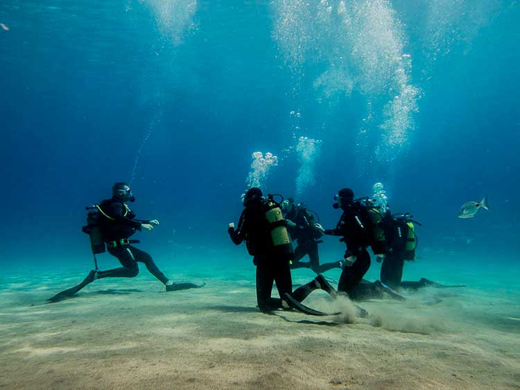 Auffrischungstauchgang, Dive College Lanzarote