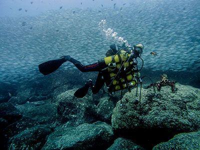 Marc Kattouw, Dive College Lanzarote