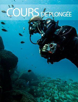 Cours de Plongée, Dive College Lanzarote
