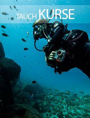 Tauch kurse, Dive College Lanzarote, Playa Blanca