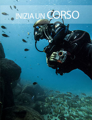 immersioni , corsi padi, Dive College Lanzarote, Playa Blanca