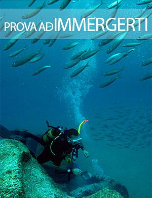 prova ad immergerti, Dive College Lanzarote, Playa Blanca